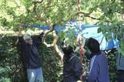 Fruit Harvesters publicity photos