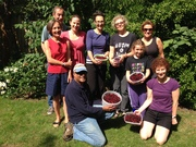 Kensal to Kilburn Harvesters Mulberry pick
