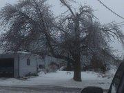 Ice Storm Dec. 2013
