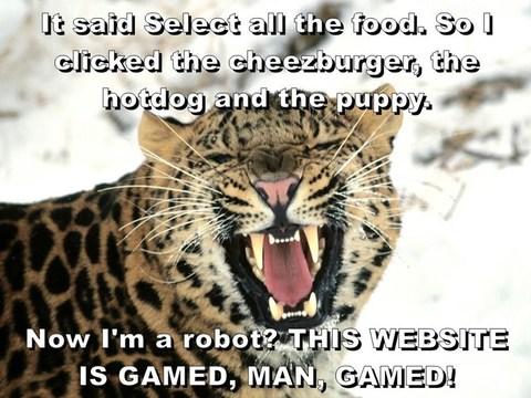 "Angry cheetah: ""It said Select all the food. So I clicked the cheezburger, the hotdog and the puppy. Now I'm a robot? THIS WEBSITE IS GAMED, MAN, GAMED!"""