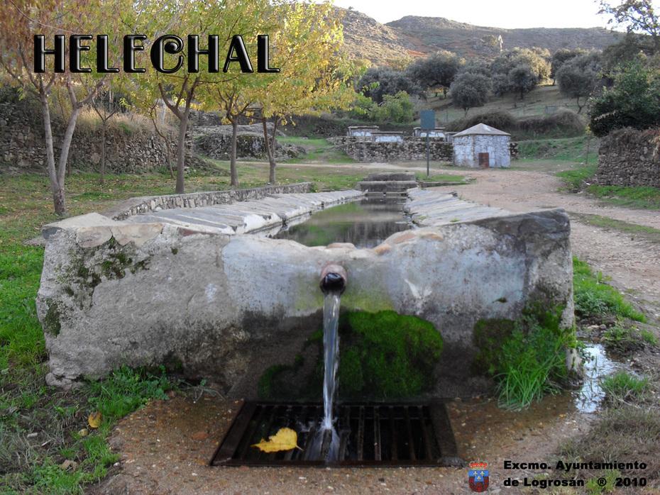 HELECHAL