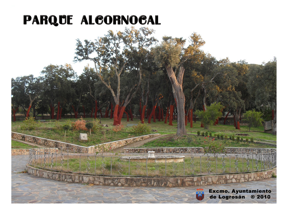 PARQUE ALCORNOCAL