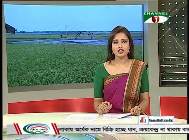 Bangladeshi farmers are not happy after bumper paddy production