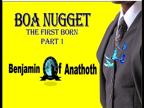 BOA Nuggets The First Born Part 1