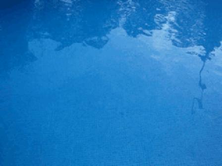Pool 2007