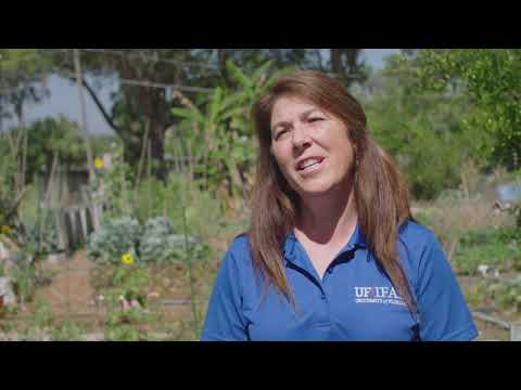 Community Gardens - Video 1: Why Community Gardens