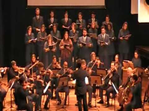 Haydn em Curitiba