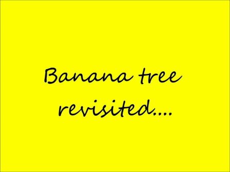 banana tree revisited