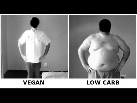 Low Carb Diet Results From an Ex-Vegan