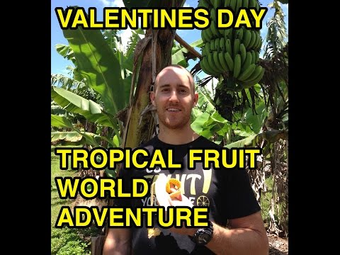 VALENTINES DAY | Tropical fruit world adventure