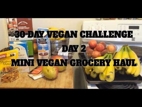 30 DAY VEGAN CHALLENGE- DAY 3- MINI GROCERY HAUL