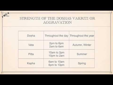 Aggravation of the Doshas (Vakriti)