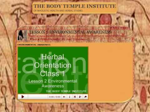 The Body Temple Institute Herbalist Orientation Class  Syllabus, f. Angelique Kidjo — Akwaba