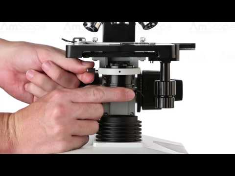AmScope Darkfield Microscopy Tutorial - DK-DRY100, DK-OIL100 on T490 Compound Microscope