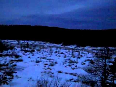 coyote hunt Feb 14,2012