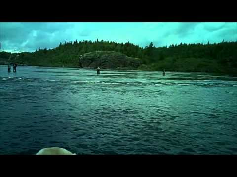 Salmon Fishing on the Exploits River - 2013