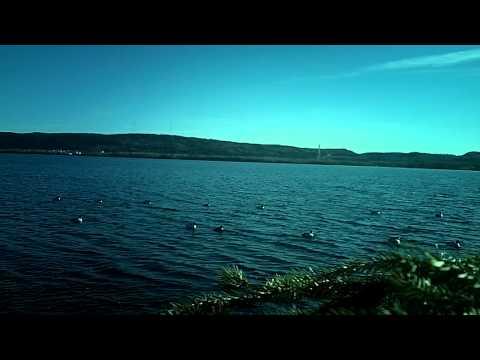 Duck Hunting Dec 8, 2012