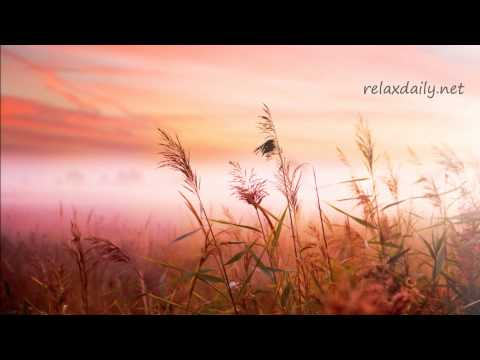 Background Music Instrumentals - relaxdaily - B-Sides N°1