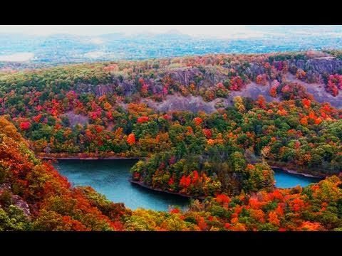 Fall Foliage Relaxing Piano Music Over Natural Sound @scenicvideos