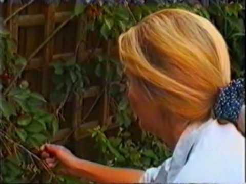 Permaculture Gardening - Pt1