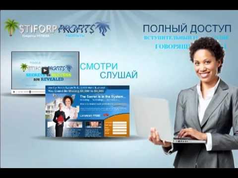 Stiforp презентация на русском языке