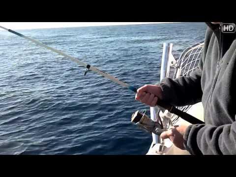 Trucos de Pesca Desde Barco