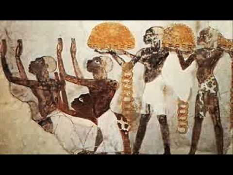 Nubians and Egyptians are the same race just slight cultural differences!!(at least the early dynasties)