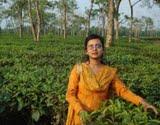 Mousumi Chowdhury