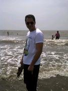 Satin Asher