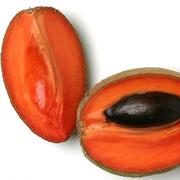 Mad About Mamey