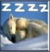 Sleep2snore
