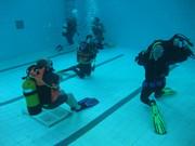 Scuba Diving at Golden Lane Estate