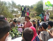A Month of Tree Planting for Palestine!