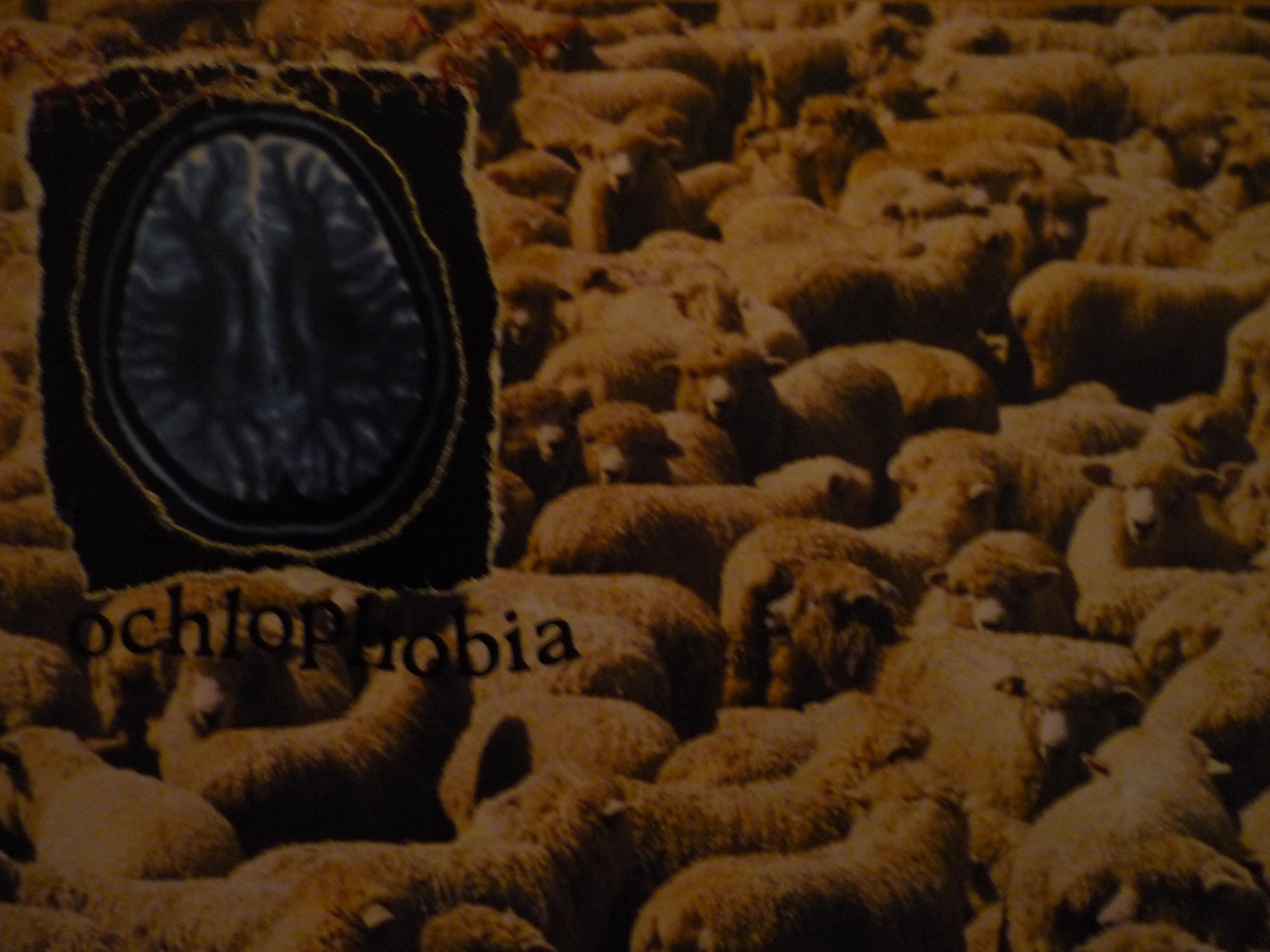 Phobia - ochlophobia (fear of crowds)
