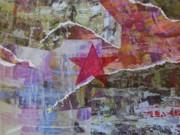 Stella Rossa/Red Star