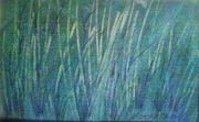 Greek Grass is Blue