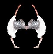 Two Half Dance