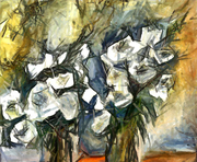0041=White flowers
