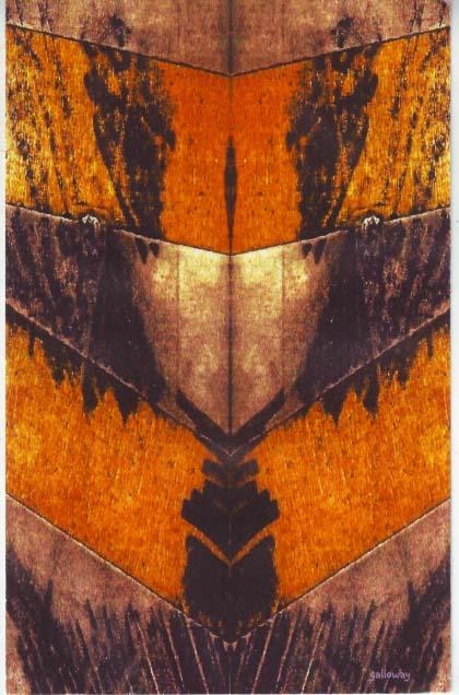 20111127 douglas galloway