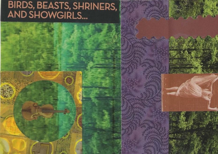 Birds, Beats, Shriners and Showgirls~Austin James