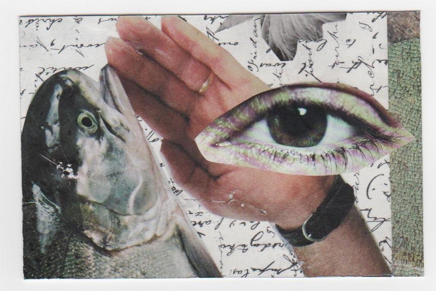 Fish Eye collage sent to CW