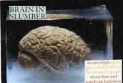 Brain in Slumber~A