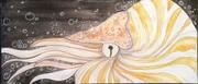 Nautilus Envie
