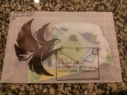 falcon envelope