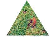 Triangulo (malos días)