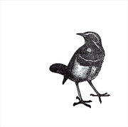 Bird Series PROJECT