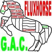 FLUXUS HORSE 2