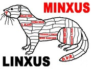 MINXUS-LINXUS 4