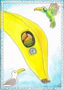 Out: Banana Billed Birds