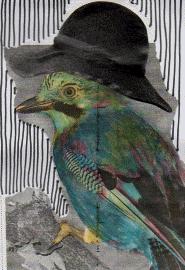 bird in sombre hat